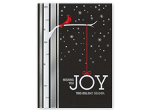 Joyful Cardinal Holiday Cards